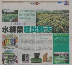 adj_newspaper_vegetable